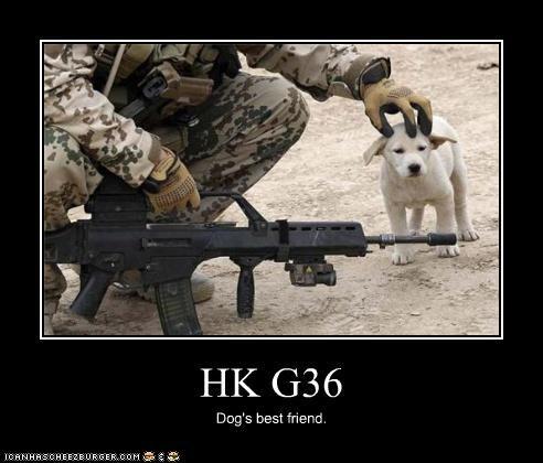G36, el mejor amigo de los perros